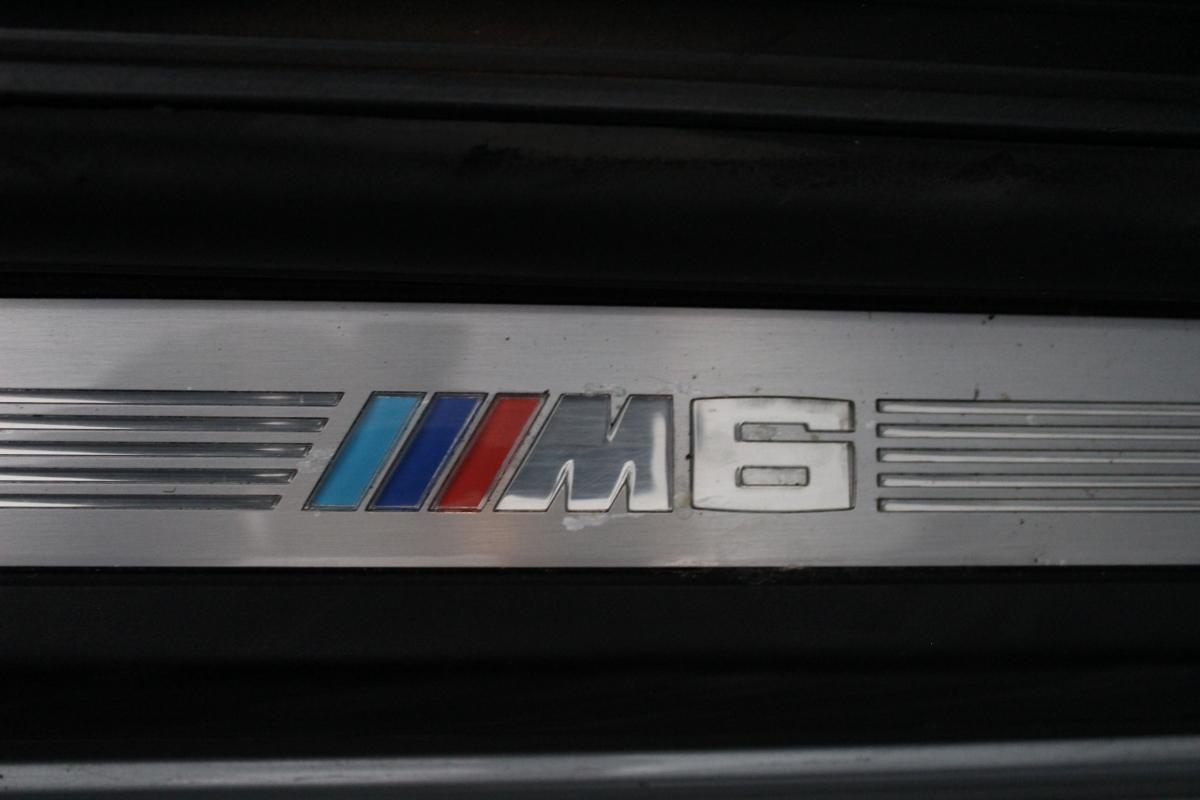 IMG 7342