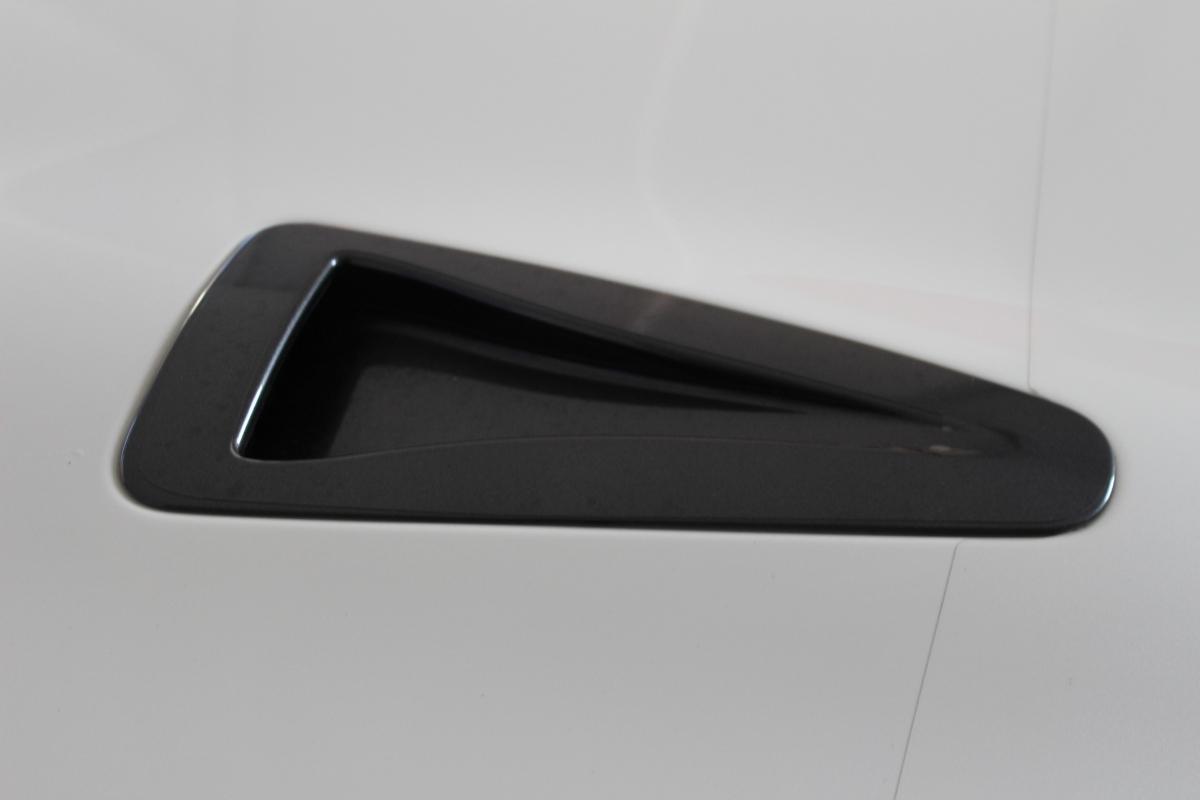 IMG 8130